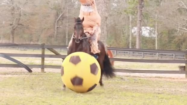 trex-horse-soccer.png