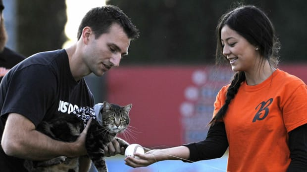 Hero Cat Can Has First Pitch