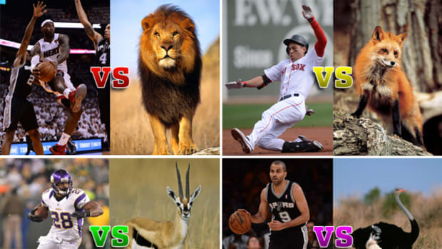 "After ""Man vs. Cheetah,"" Four More (Imaginary) Athlete-Animal Races"