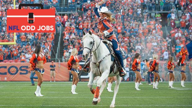 broncos-horse-mascot-thunder-iii-nfl-odd-jobs.jpg