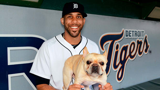 Pet Pals: David Price's Dog is Almost as Famous as the Cy Young Winner
