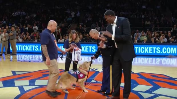 knicks-army-veteran-service-dog-video.png