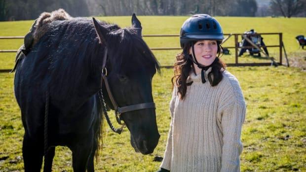 HorseStory.jpg