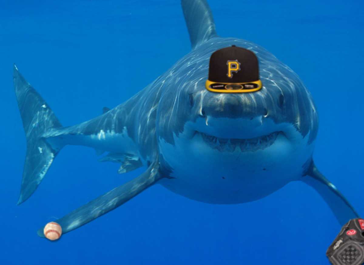 great white shark baseball