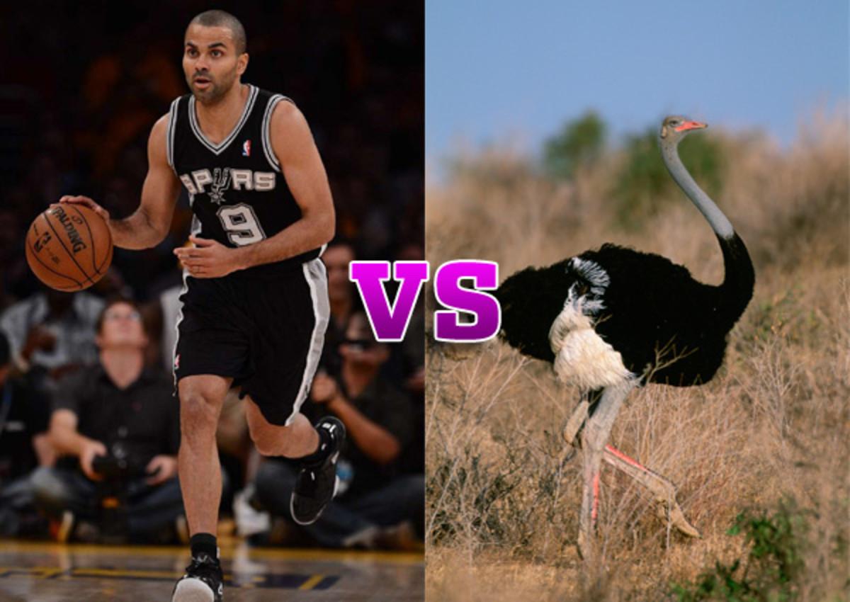 tony parker vs ostrich