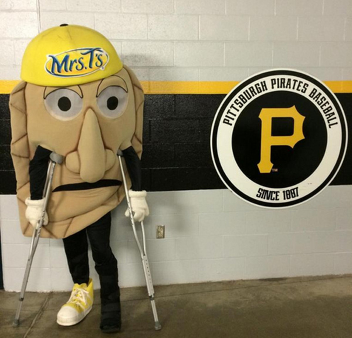 pittsburgh pirates peirgoy race cheese chester